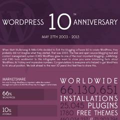 Infografik der WordPress Geschichte - 10 Jahre