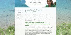 Website Erstellung Buch Präsentation Zschocke